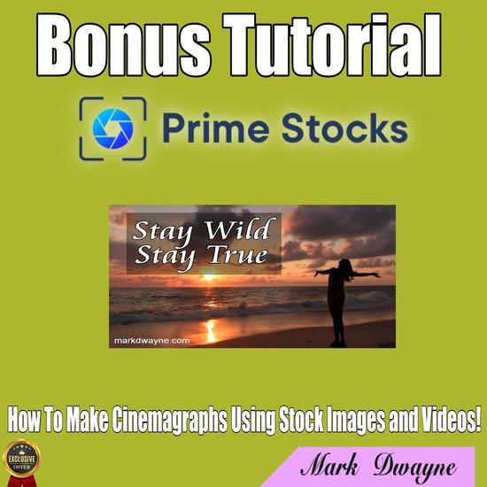 prime stocks review,prime stocks marketing