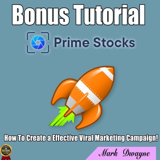 prime stocks review,prime stocks demo review