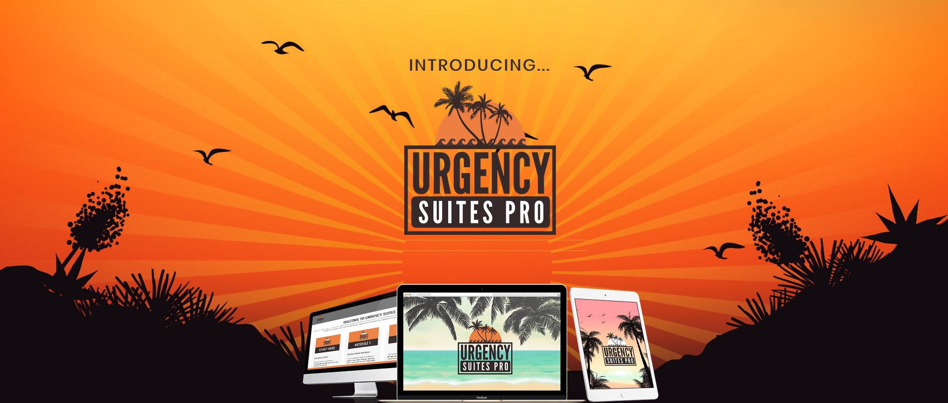 "So We Decided To Create Something Way Better, And Give It To You At A Fraction Of The Price. You Need Urgency, But You Deserve Better … You Deserve Urgency Suites Pro We Show You EXACTLY How to Use Urgency To Multiply Your Results... Inside we show you EXACTLY how we use this same software to generate over $50,000 dollars a month each. Anyone can take our exact blueprint with Urgency Suites pro to Multiply their results without ANY additional work. Plus, this software is truly a something ANYONE can use to get FAST result even if you never made a dollar online. This method banks us up to $30,000 in a single day. If you're looking for a way to literally multiply your results while working less. You have to see ""Urgency Suites Pro"". The One Flaw of Most Wannabe Entrepreneurs… The one missing ingredient for most ""wannabe entrepreneurs"" is urgency… Without out it, you are at a massive disadvantage. Most newbies are struggling because:"