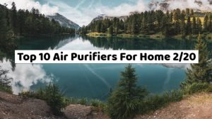 top 10 air purifiers for home
